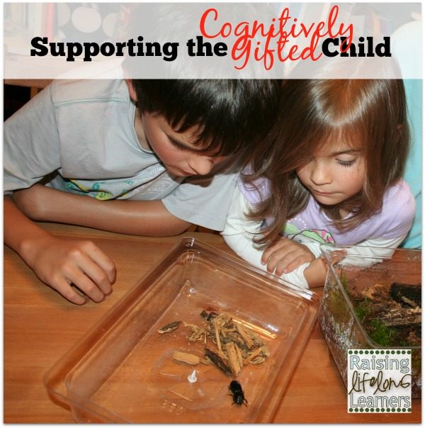 Supporting the Cognitively Gifted Child via www.RaisingLifelongLearners.com